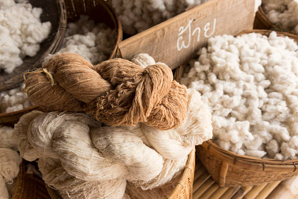 cotton harvesting - wool stock photos and pictures