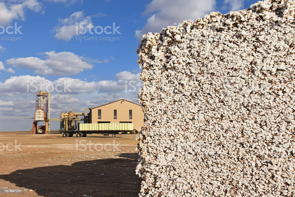 cotton module in gin yard ready for ginning stock photo