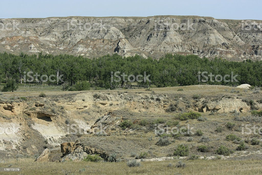 Cottonwood Flats in Dinosaur Park royalty-free stock photo