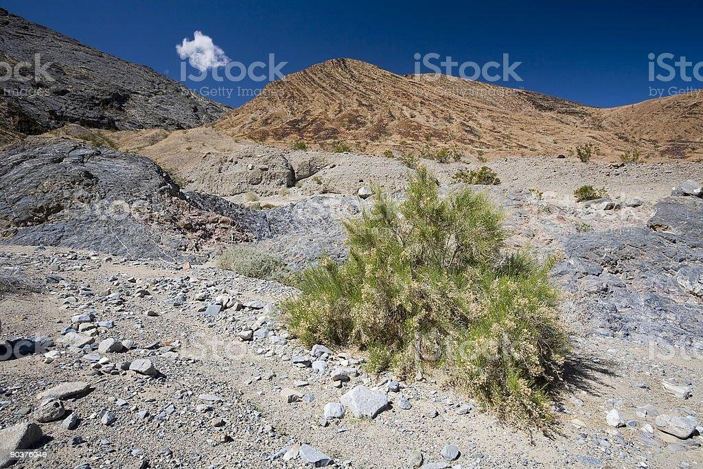Cottonwood Mountains stock photo