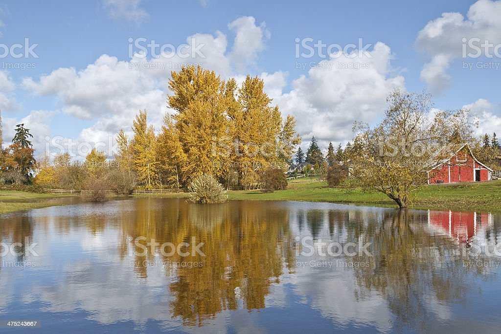 Red Barn and Fall Colors Reflected in a Pond royalty-free stock photo