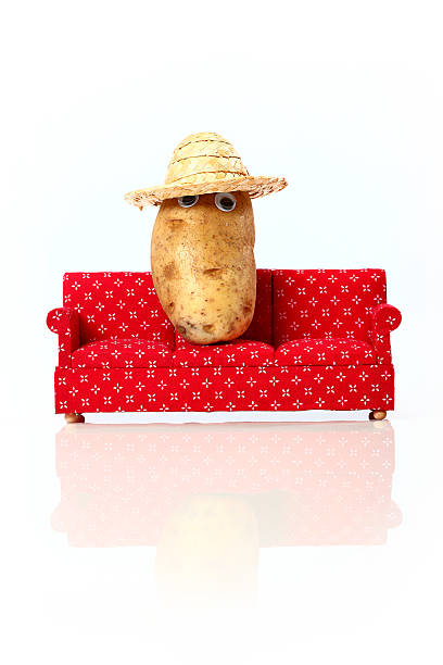 Couch Potato on Vacation stock photo