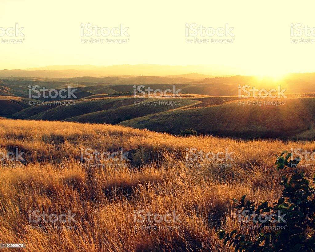 Coucher de soleil sur la prairie stock photo