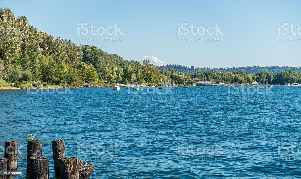 Coulon Park Shoreline 2 stock photo