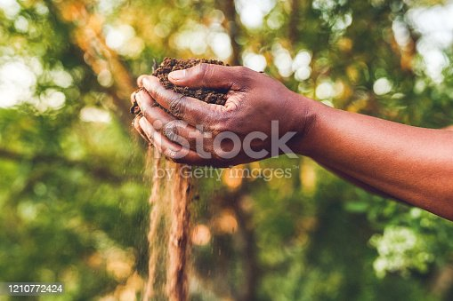 Cropped shot of an unrecognizable woman  holding a handful of soil outdoors