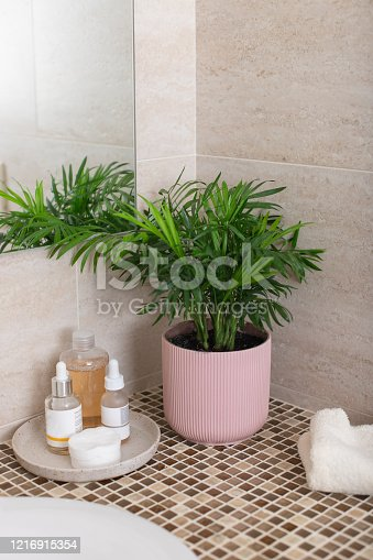 istock counter in the bathroom with houseplant in pink flowerpot 1216915354