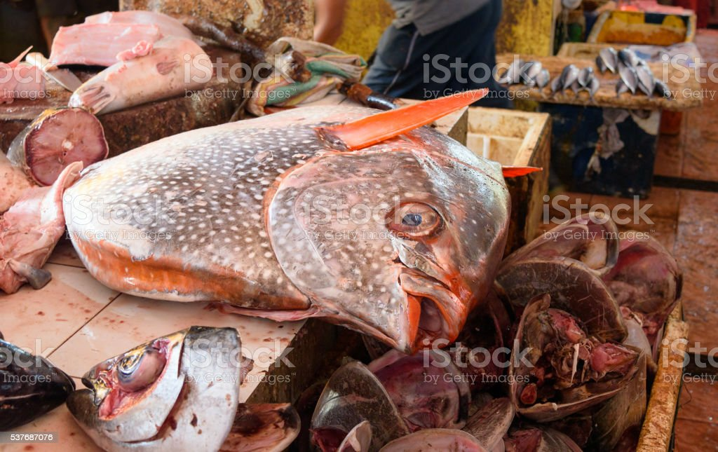 Counter with very big fish on Tomohon Traditional Market stock photo