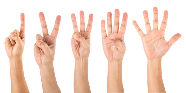 Counting Hands from one to five stock photo