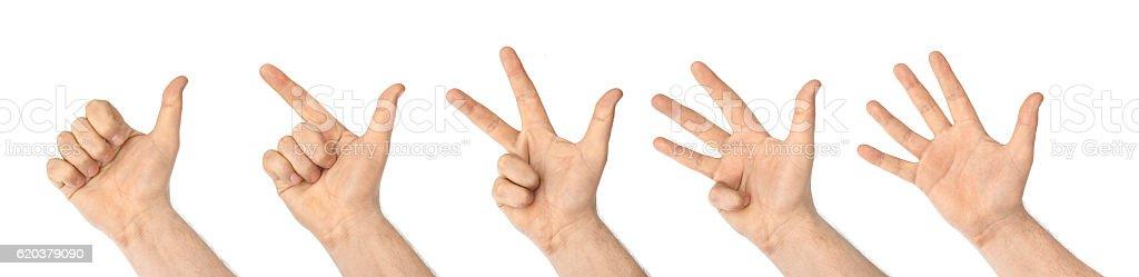 A contar as mãos (1, 5 foto de stock royalty-free