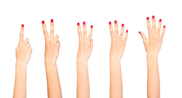 Counting woman hands stock photo