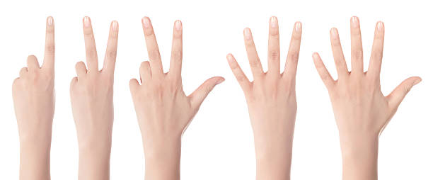 counting woman hands - number 3 stock photos and pictures