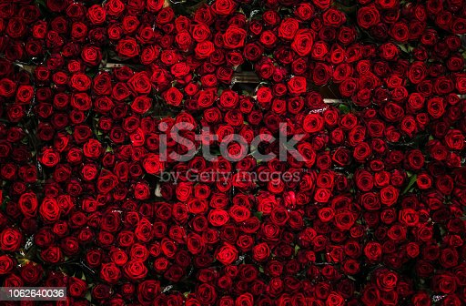 The top layer of a flower cart full of roses at a flower auction in Holland, photographed from above. Roses are bright red, and very colorful.