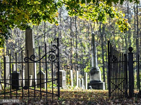Country Churchyard Antique Wrought Iron Fence Cemetery