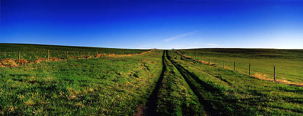 Country Dirt Road Grassy stock photo