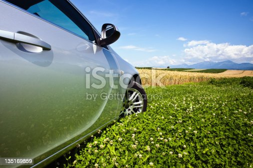 Beautiful country field with blue sky and side view car.