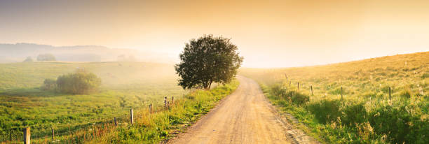 Country Farm Road through Foggy Landscape stock photo