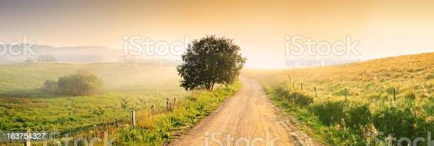 Country Farm Road Through Foggy Landscape Stock Photo - Download Image Now