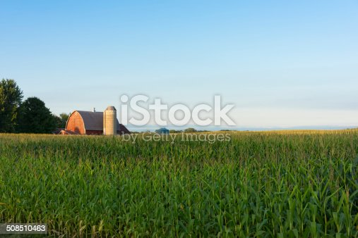 Country farm scene with red barn and corn field. This photo was taken in Minnesota and includes a red barn and silo against a blue sky in the distance with late summer corn field in the foreground.