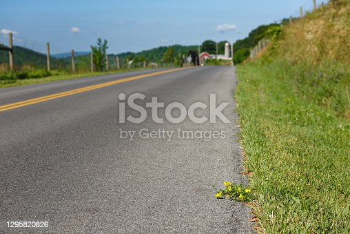 Low angle view of a two lane blacktop road through the rural farmland featuring a single tenacious weed growing stubbornly along the berm edge, Pennsylvania, PA, USA.