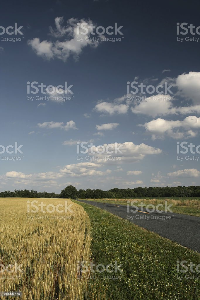country field sky road royalty-free stock photo