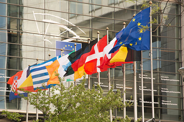 Country flags in front of the European Parliament - foto de stock
