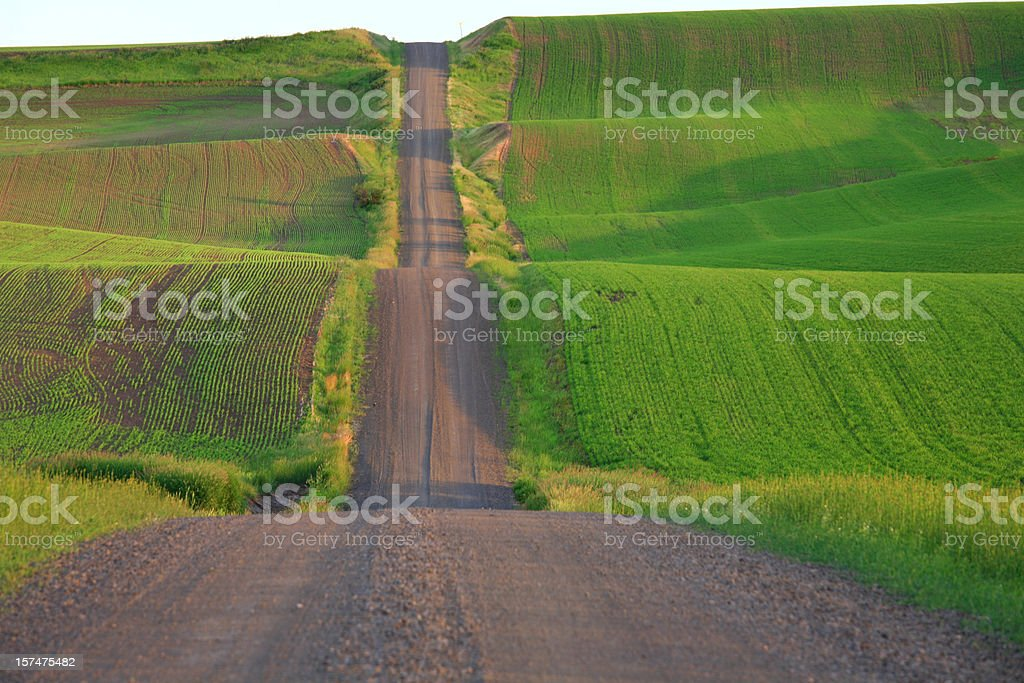 Country Gravel Road Through Rolling Farm Land stock photo