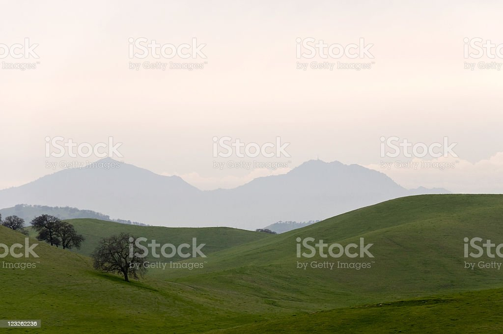 Country Hills at Dusk stock photo