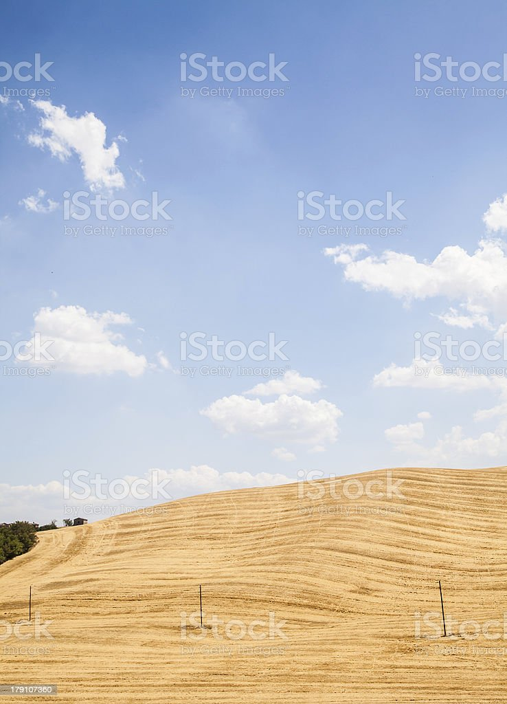 Country in Tuscany royalty-free stock photo