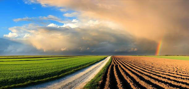 Country Landscape - fields and rainbow in the sunset sky stock photo