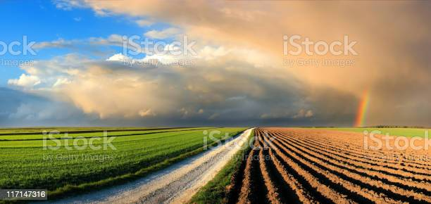 Country Landscape Fields And Rainbow In The Sunset Sky Stock Photo - Download Image Now
