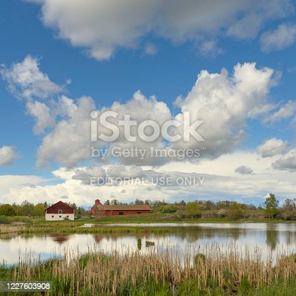 A small lake in a spring landscape, in the background a few agricultural buildings.