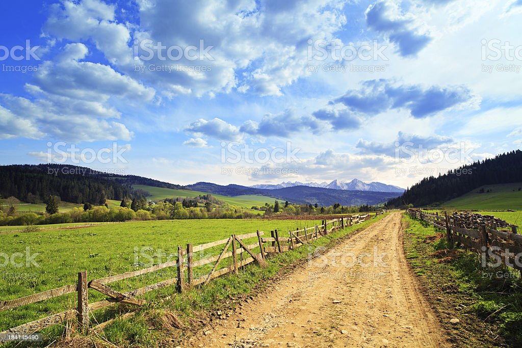 Country landscape - road between green fields stock photo