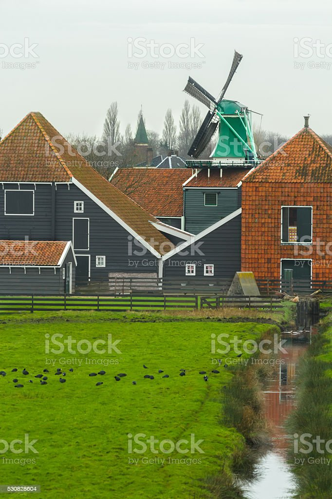 Country landscape with traditional Dutch windmill and farm house background stock photo