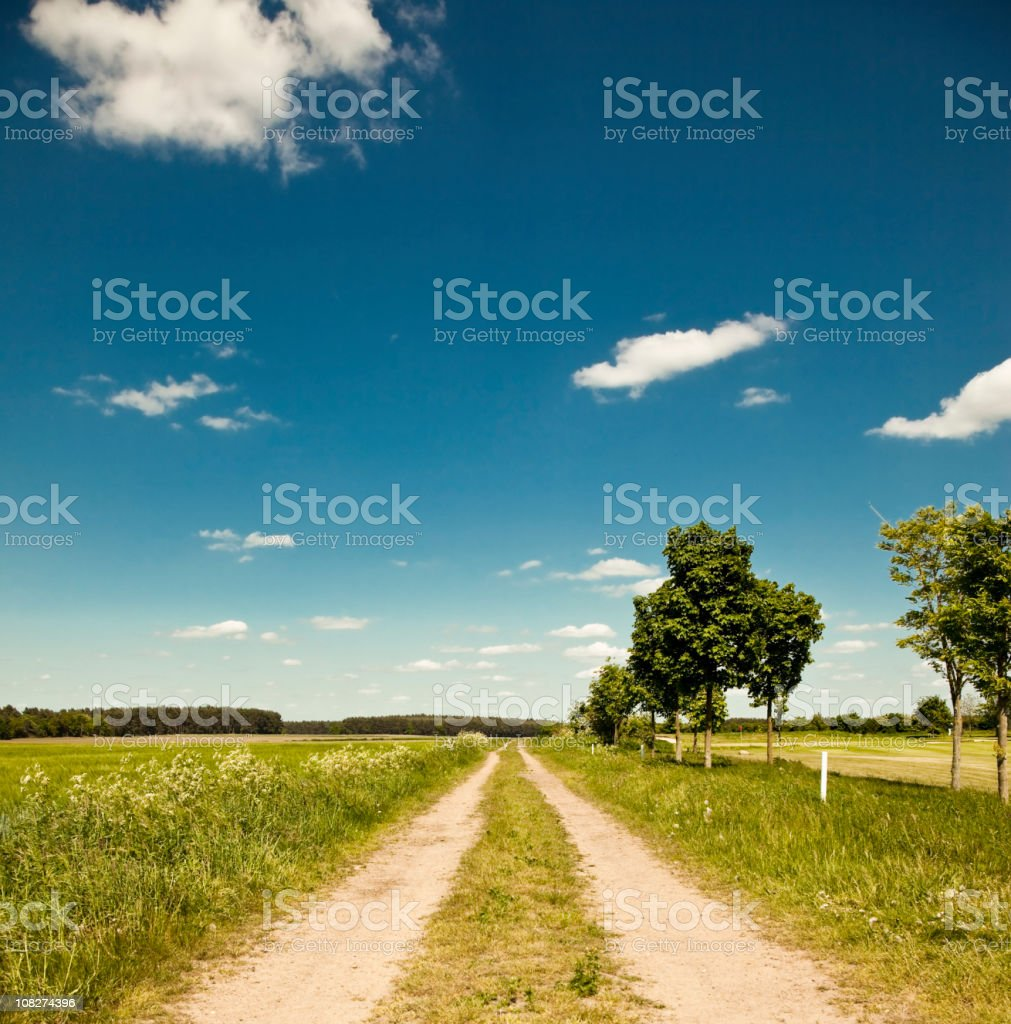 Country Lane and Field Against Blue Sky royalty-free stock photo