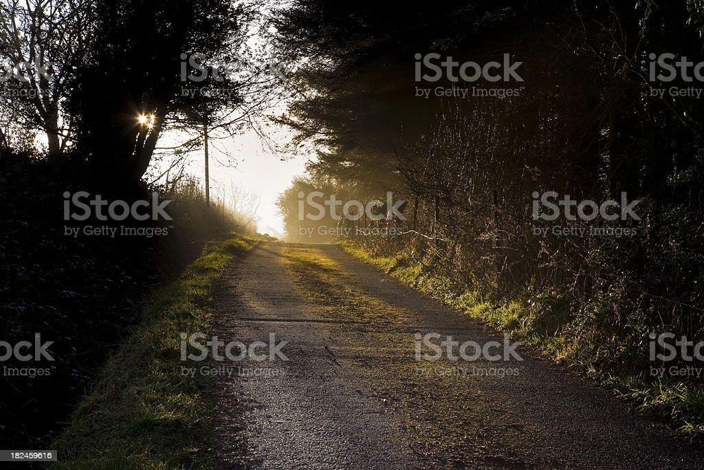 País lane ao amanhecer foto royalty-free
