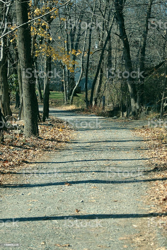 Country Lane in late Autumn stock photo
