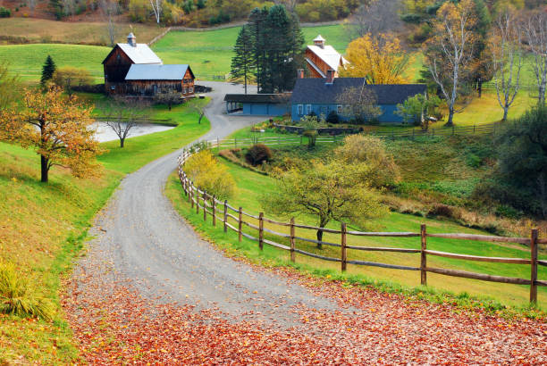 A country lane leads to a bucolic farm stock photo