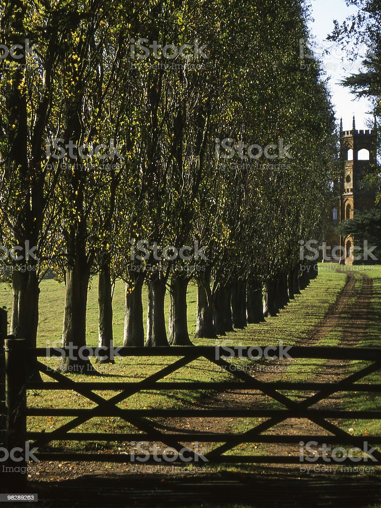Country Lane. Trees. Gate. Buckinghamshire. England royalty-free stock photo