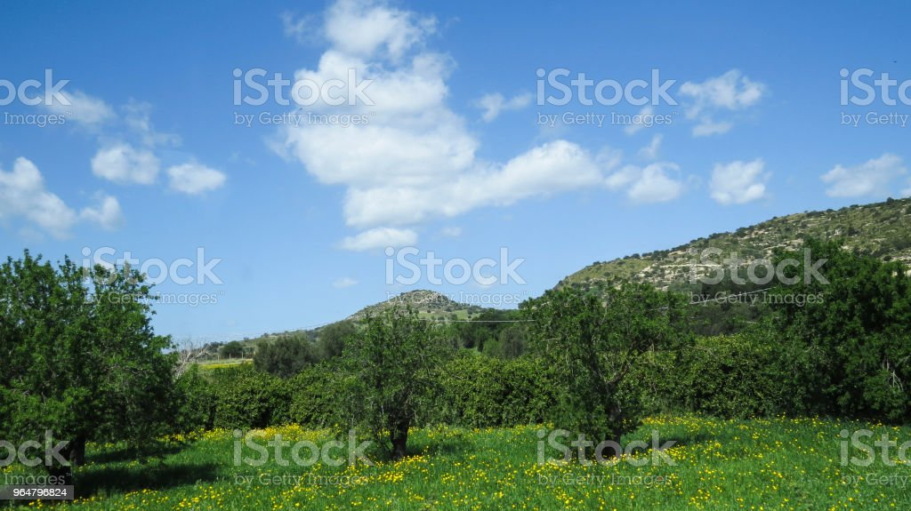 Country near  Modica, Sicily, Italy royalty-free stock photo