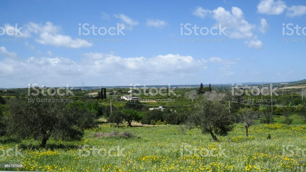 Country near  Modica, Sicily, Italy royalty-free stock photo