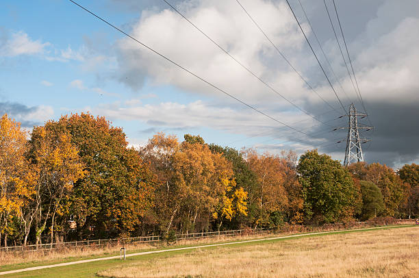 country path goes along electric pylon in autumn stock photo