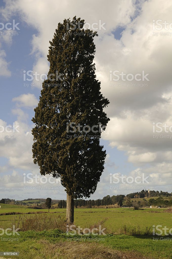 Country royalty-free stock photo