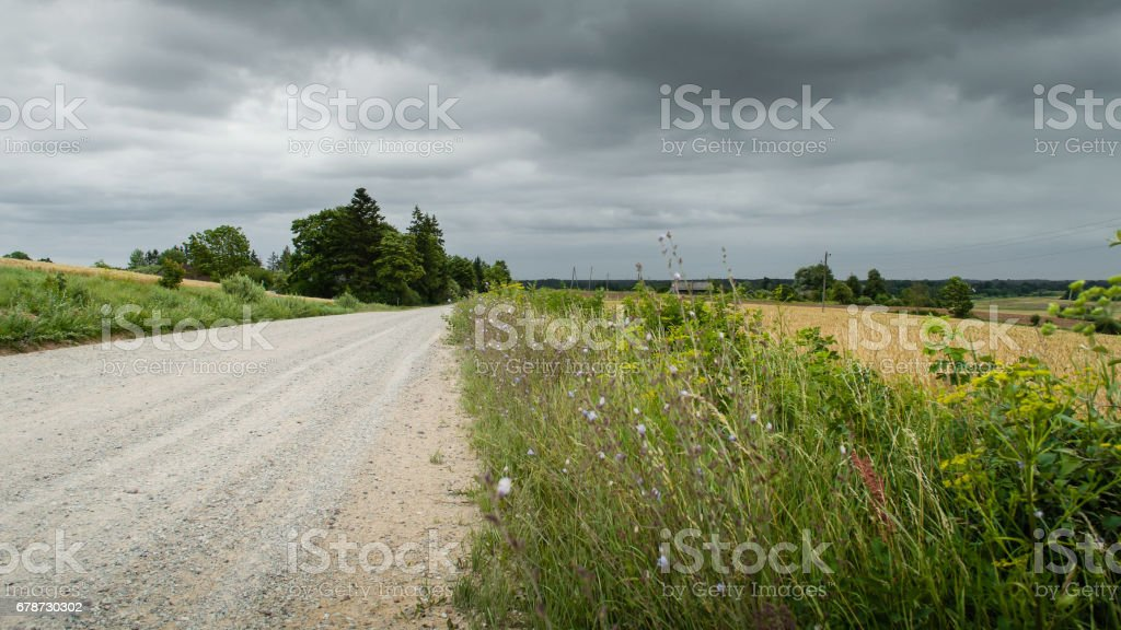 country road alley lit by evening sun royalty-free stock photo