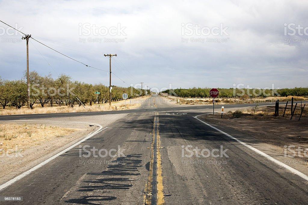 Country road along plantation royalty-free stock photo