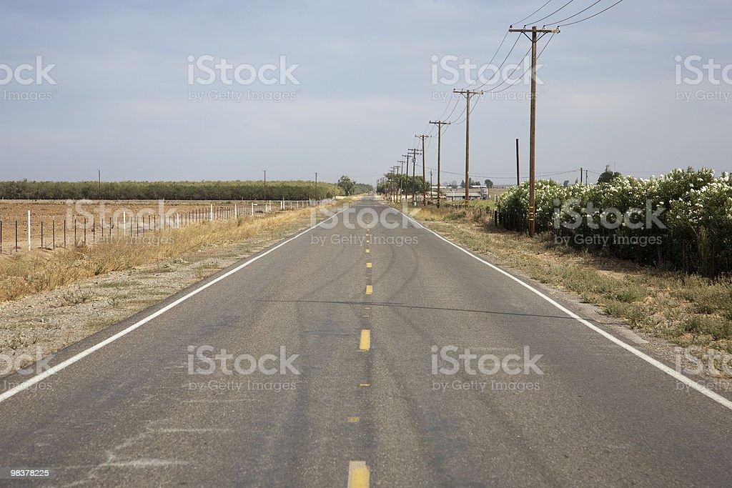 Strada di campagna sulla piantagione foto stock royalty-free