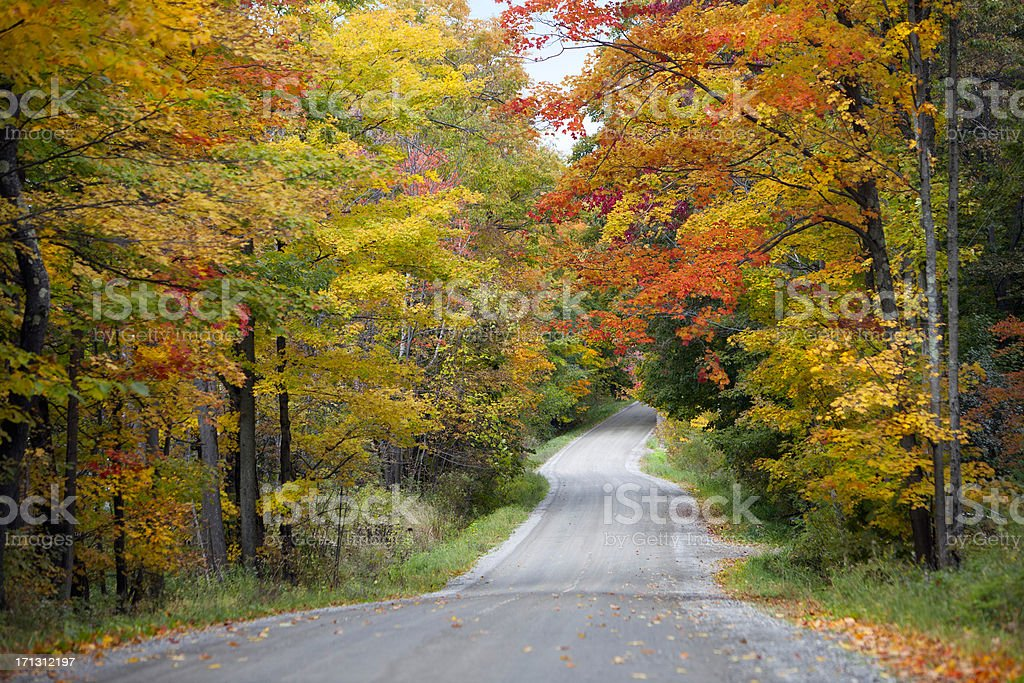 Country Road and Fall Foliage royalty-free stock photo