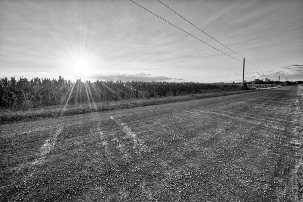 Telephone Pole Power Line Landscape Black And White Stock