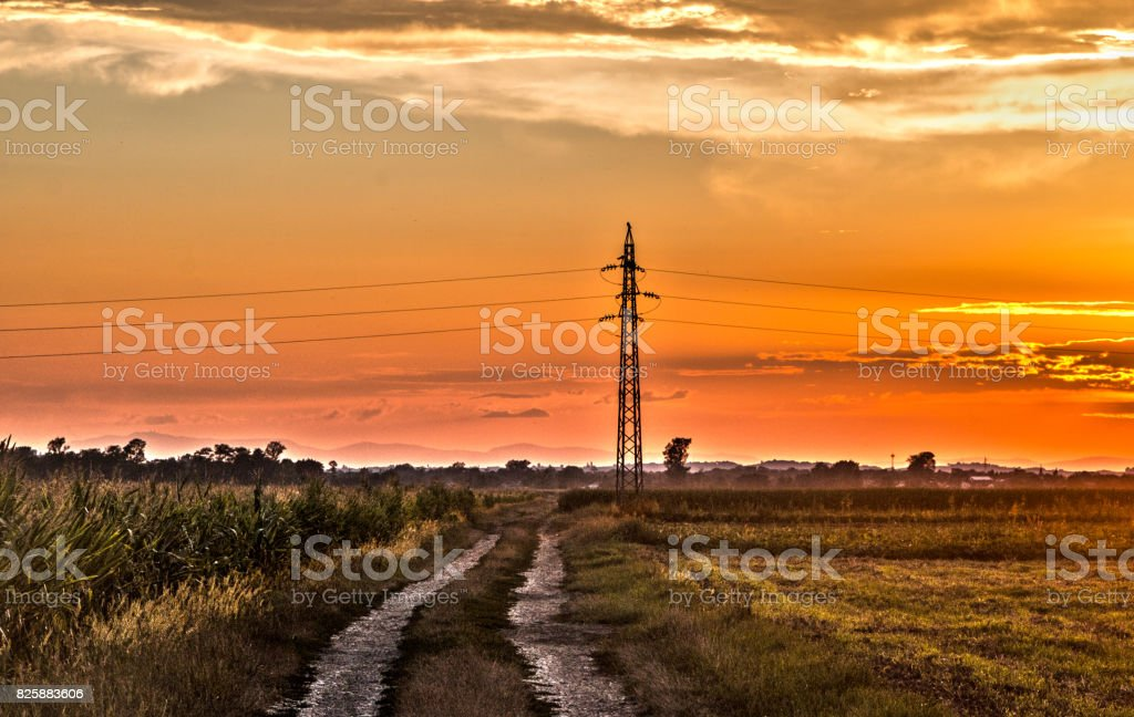 Country road and fields at the sunset stock photo
