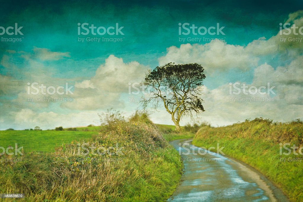 Country Road and tree stock photo