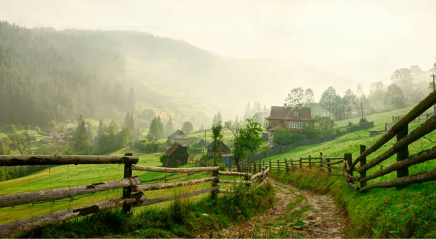 Country Road  at dawn,  Vorokhta,   Carpathian Mountains, Ukraine. Toned image stock photo